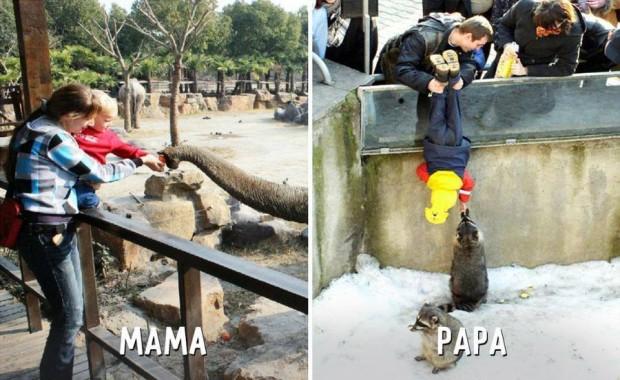 1 mama vs papa en el zoologico