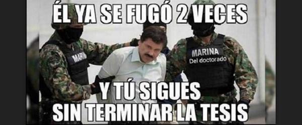 Chapo 4