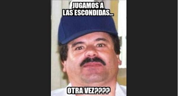 Chapo 8