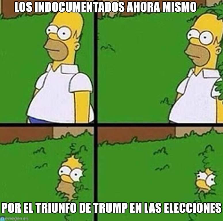 trump8