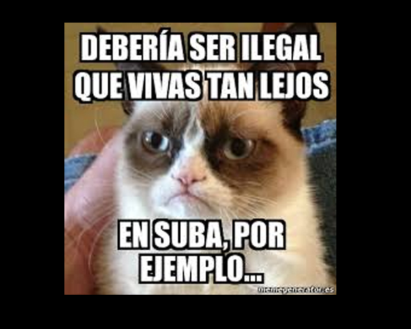 memes.suba6