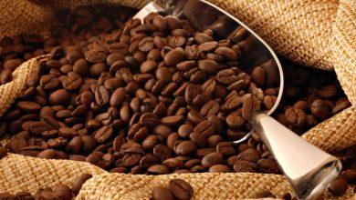 ¿Cuál es el mayor secreto del café más caro del mundo?