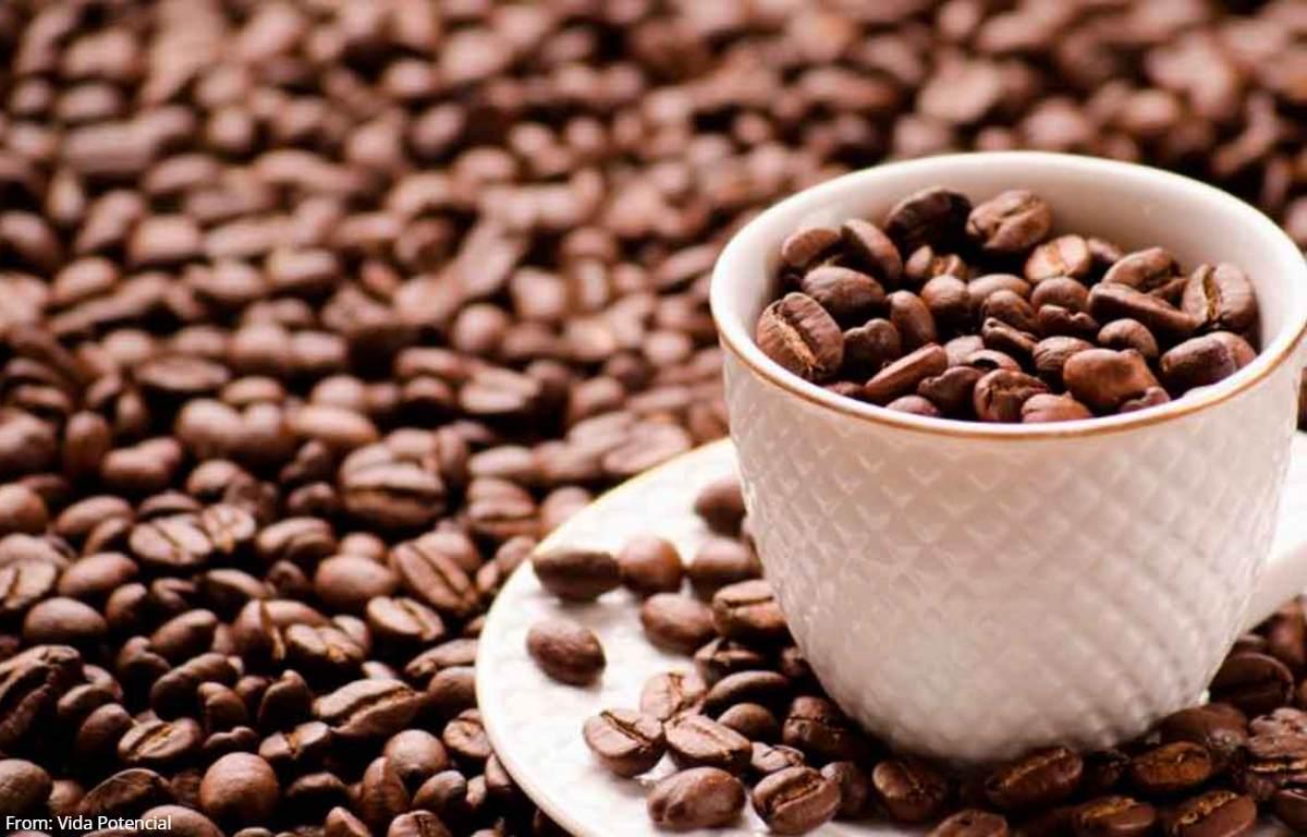 Las mejores curiosidades del café que no conocías