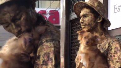 Video viral de Perro estatua que ayuda a su dueño