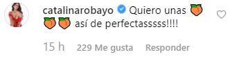 Comentario Catalina Robayo