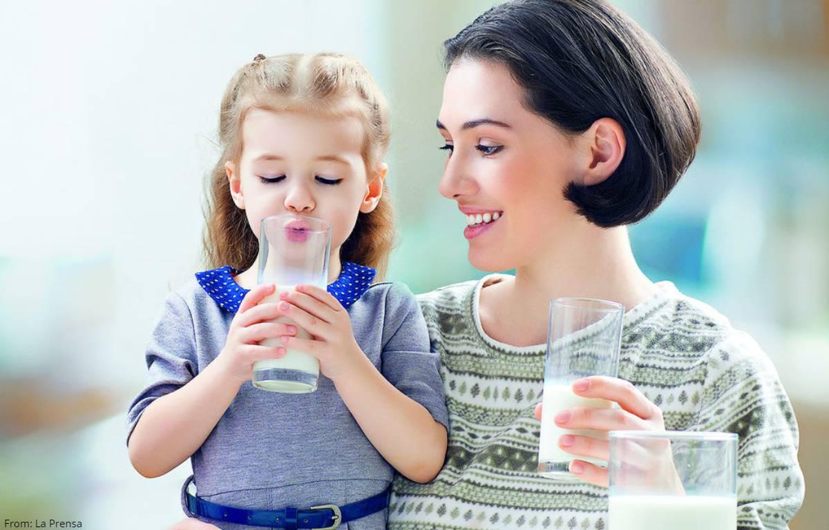 Top 5 de las mejores marcas de leche entera