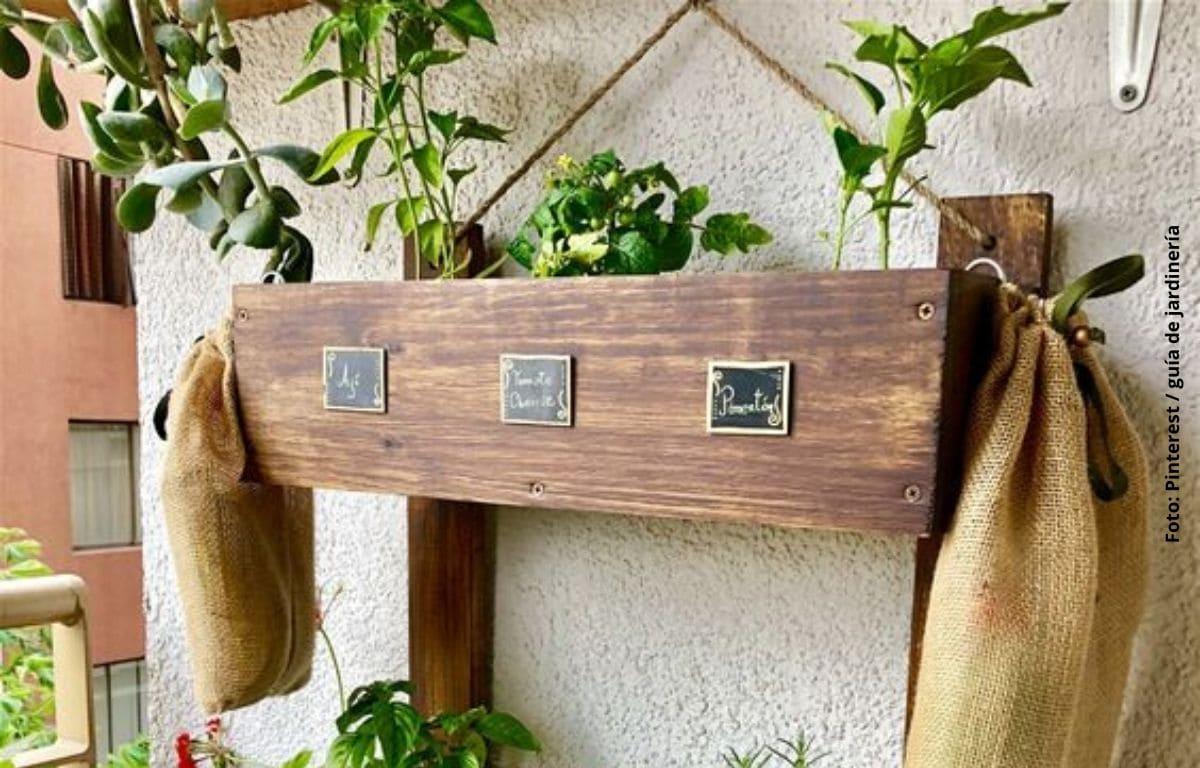 hierbas sembradas en maceta de madera