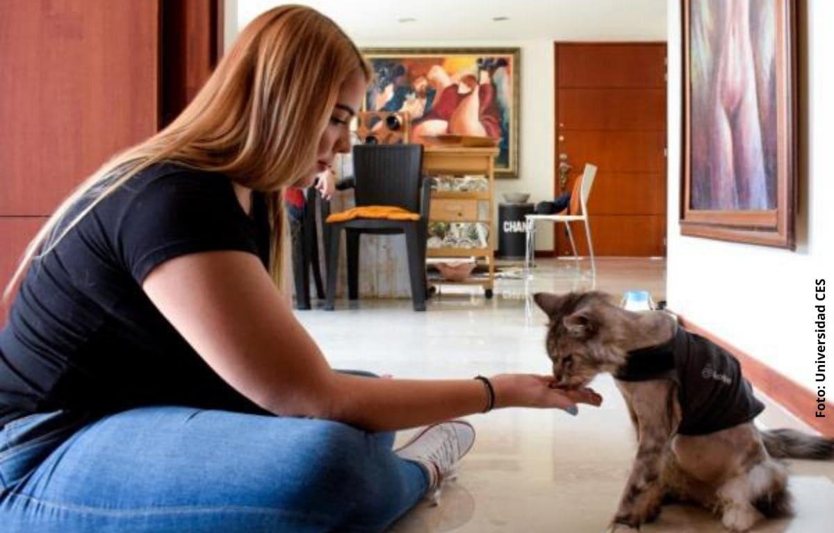 mujer dandole de comer a un gato
