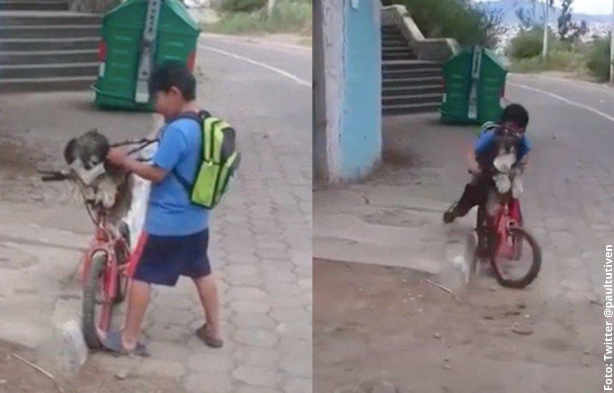 Niño le pone tapabocas a su perro y lo pasea en bicicleta