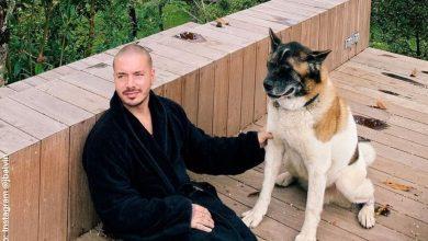 J Balvin es criticado por pintarle la cola a su perro