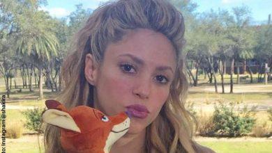Se prenden las alarmas por posible embarazo de Shakira
