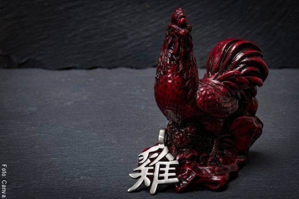 Foto de un gallo para ilustrar el pronóstico de este animal en el año del Buey según el Horóscopo Chino