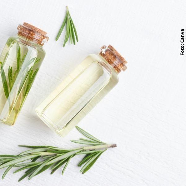 foto de unas botellas con agua y romero