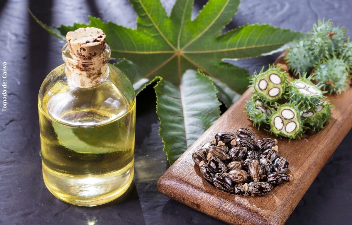 ¿Para qué sirve el aceite de ricino? Usos y beneficios