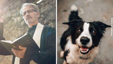 Sacerdote lleva a su perrito a misa y enternece las redes