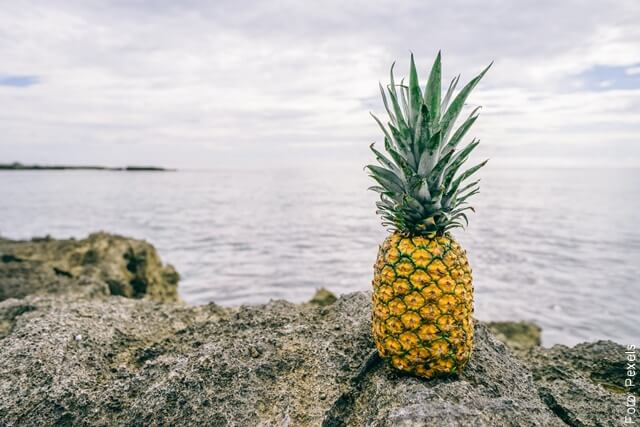 foto de una piña en el mar