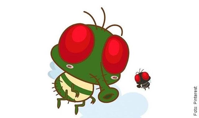 ilustración de dos moscas
