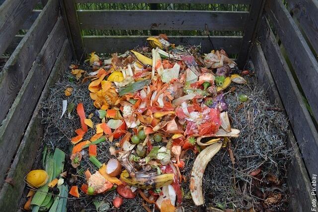 foto de compostaje