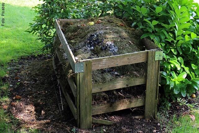foto de compost casero
