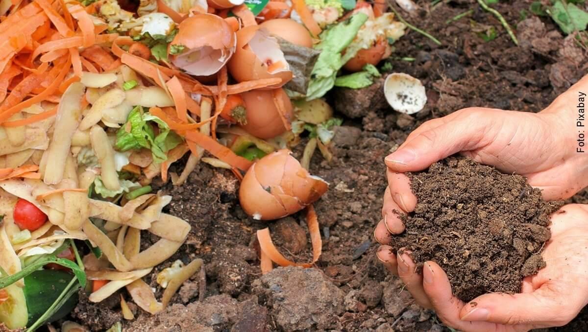 ¿Cómo hacer compost? Aprende y aprovecha tus residuos