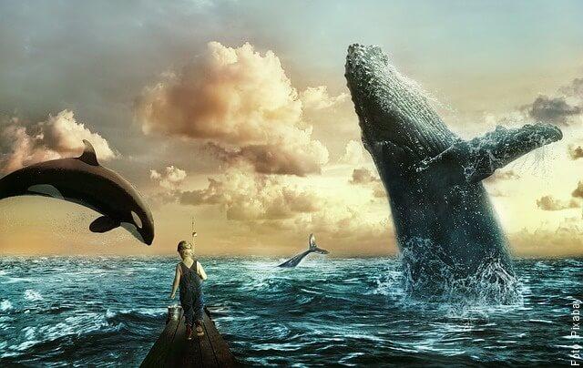 ilustración de varias ballenas