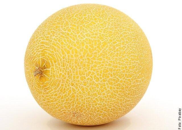 foto de un melón