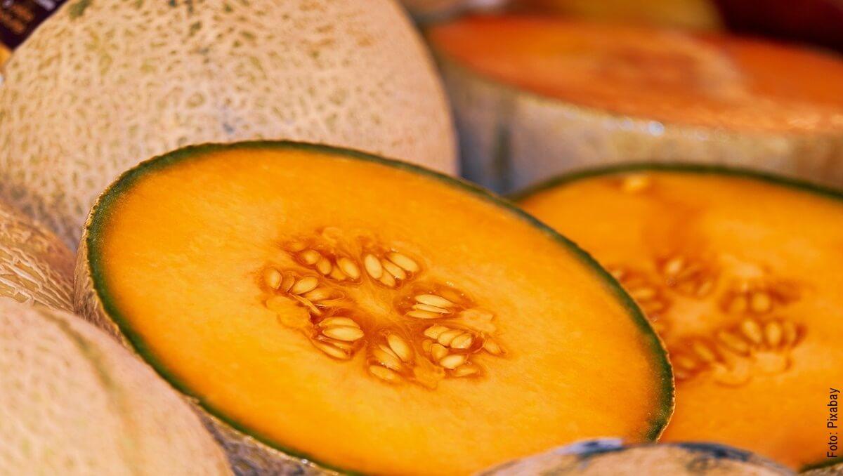¿Para qué sirve el melón? Conoce todos los beneficios de consumirlo