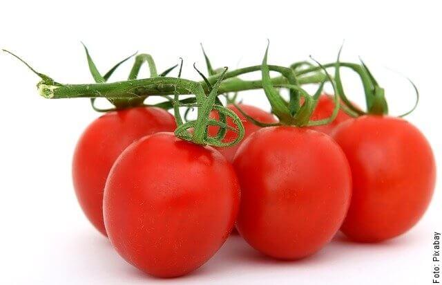 foto de tomates con rama