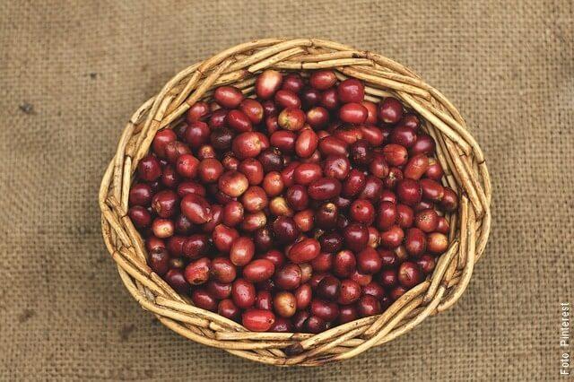 foto de granos de frijol en una cesta