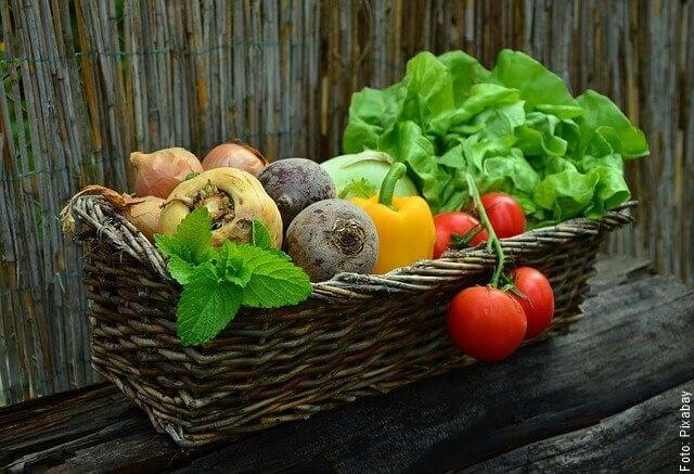 foto de varias verduras