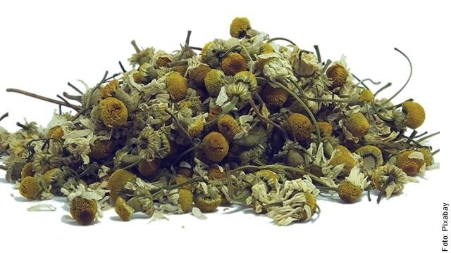 foto de semillas de manzanilla