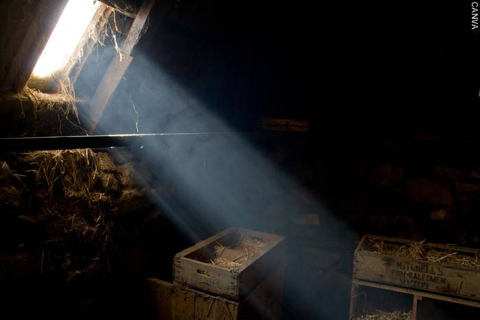 Foto de un haz de luz