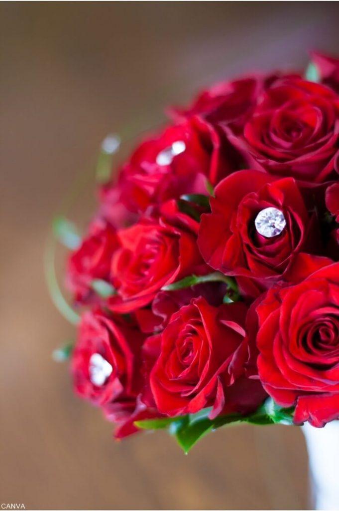 Foto de rosas rojas con perlas en el centro de la flor