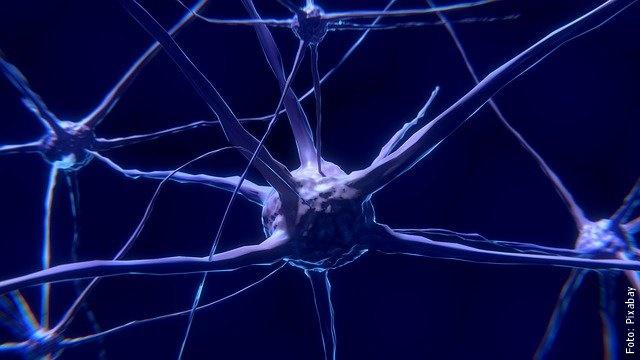 ilustración de neuronas