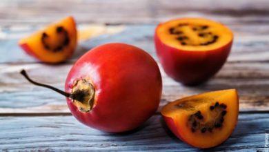 Para qué sirve el tomate de árbol, estos son sus beneficios