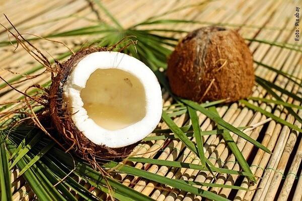 foto de cocos